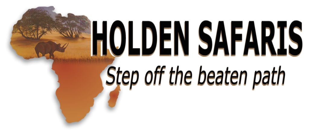 How I Landed My Dream Career at Holden Safaris
