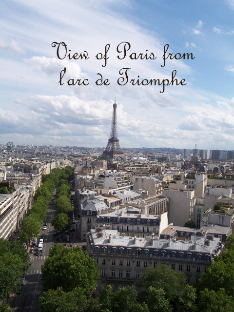 View of Paris from L'Arc de Triomphe