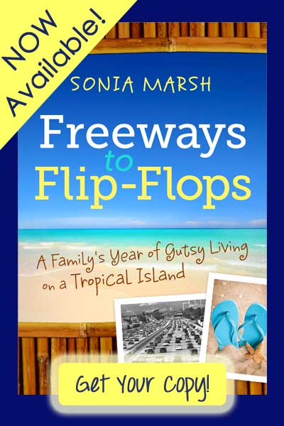 Freeways to Flip-Flops is Now Available