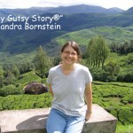 Sandra Bornstein Cover -Munnar- stop on way to hill station