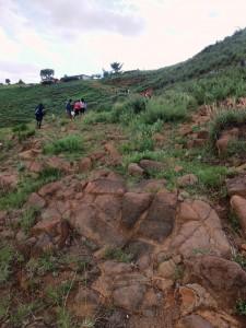 Steep slopes to climb and I had to drag Mamoshaka up the hill.