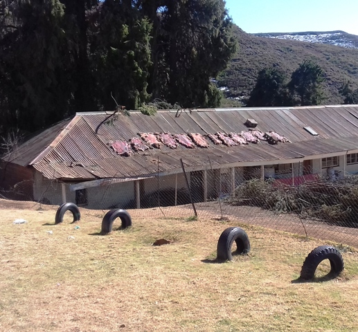 sheep skins drying on roof