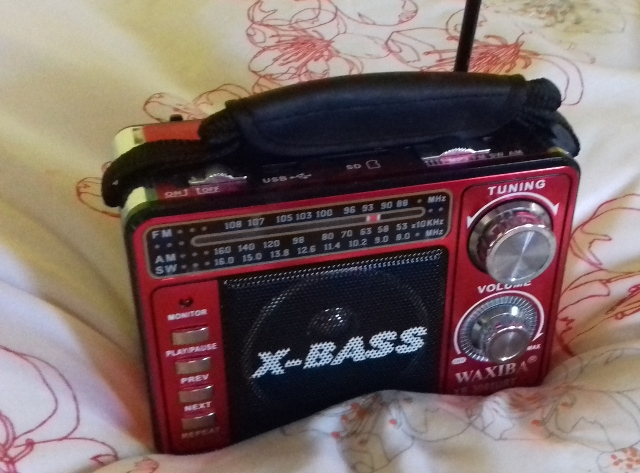 radio-small